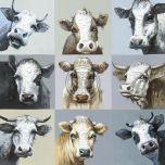 Olieverf schilderij verzameling Koeien van Ter Halle